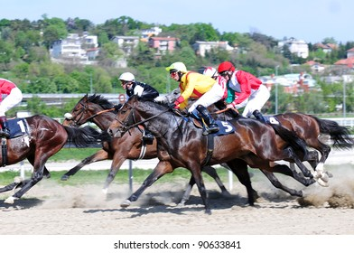 """BELGRADE,SERBIA-SEPTEMBER 2:Unidentified horses and jockeys in gallop in race """"Wretham House"""" on September 2, 2011 in Belgrade, Serbia"""