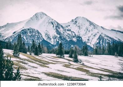 Belianske Tatry mountains in winter, Slovak republic. Seasonal natural scene. Travel destination. Analog photo filter with scratches.