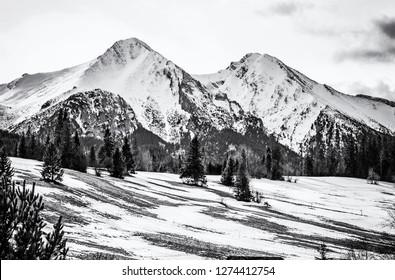 Belianske Tatry mountains in winter, Slovak republic. Seasonal natural scene. Travel destination. Black and white photo.