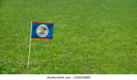 Belize Flag. Photo of Belize flag on a green grass lawn background. National flag waving outdoors.