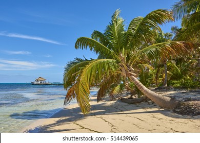 Belize - Long Caye, Caribbean Sea