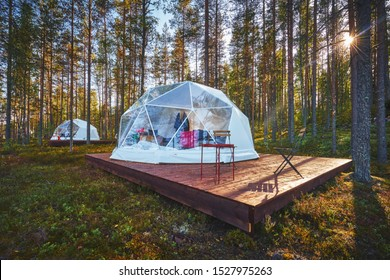 Bell tent with transparent window in a forest camp