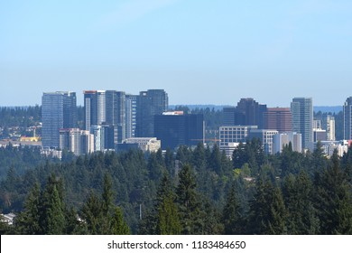 Bellevue Skyline in Washington-USA