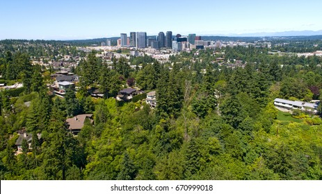 Bellevue Washington City Forested Landscape View
