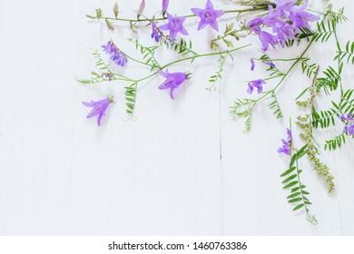 bellflower on white wooden background