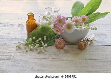 Bellis perenis, convallaria in homeopathic medicina on wooden