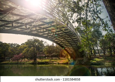 Bellow view of a ibirapuera's bridge with trees in the background and a big lake in the ground, in São Paulo. City, tourism, peaceful place, parks, is the concept