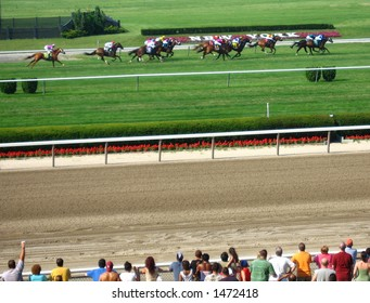 Belmont racetrack Father's Day