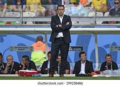 BELO HORIZONTE, BRAZIL - June 17, 2014: Marc wilmots, head coach of Belgium is seen during the FIFA 2014 World Cup Group H at Mineirao Stadium