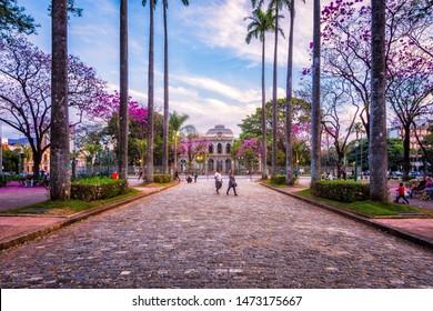 Belo Horizonte/Minas Gerais/Brazil - August 04th 2019: Palm Trees Corridor in Liberty Square (Praça da Liberdade) Leading to Liberty Palace (Palácio da Liberdade) Famous Touristic Landmark in Downtown