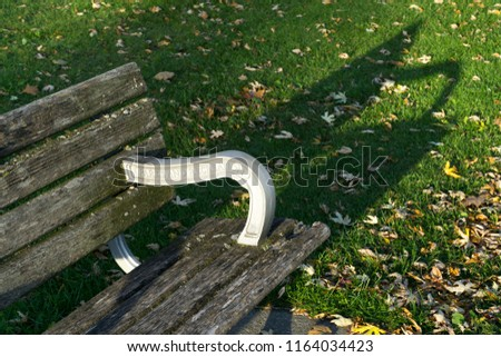 Bench with autumn leaves at park