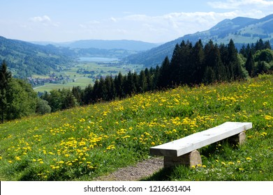 Bench with a beautiful view of the lake Alpsee in the Allgäu montainous Landscape.