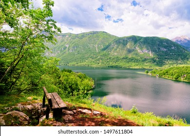 Bench at Bohinj Lake of Slovenia. Nature in Slovenija. Scenery view of green forest and blue water. Beautiful landscape in summer. Alpine Travel destination. Julian Alps mountains on scenic background
