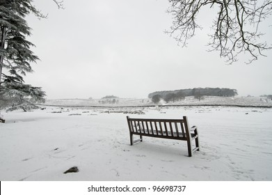 Bench in Bradgate park with snow, Leicestershire, England