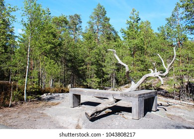 Bench in forest, Nuuksio, Finland