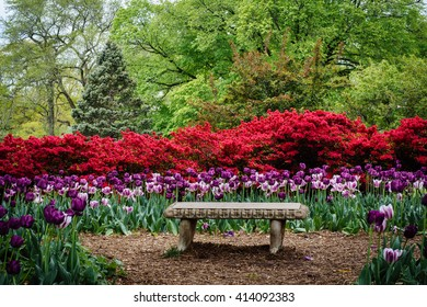 Bench and gardens at Sherwood Gardens Park, in Guilford, Baltimore, Maryland.