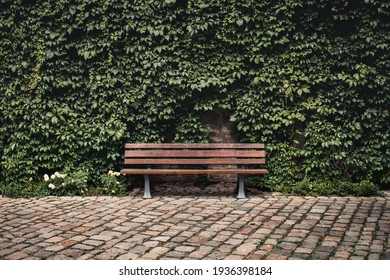 Bench in the green area