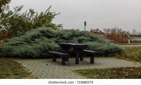 Bench with green bush and autumn high-way behind