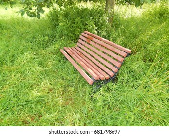 Bench in the green grass