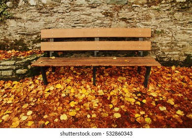 A bench and leaves in autumn, at National Park in Ireland