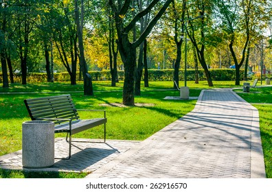 bench near the path of paving stones in a quiet city park early autumn on a sunny day on a background of trees