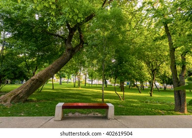 Bench on a  empty alley in the park in summer