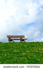 bench on green grass