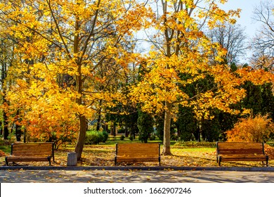 Bench on the park alley in golden autumn time in Kyiv, Ukraine
