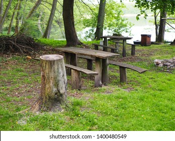 Bench in the park by a lake, picnic area