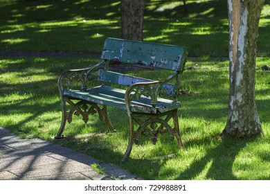 Bench in the park with grass and trees