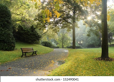 Bench in a park on a sunny autumn morning. Morning walk.