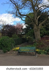 Bench in a park under a large old tree against a background of flowering plants (Removed by phone)
