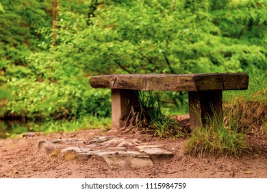 A bench in a peaceful setting in a wood in Dartmoor National Park