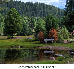 A bench is reflected in the water of a South Tyrolean biotope