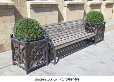 Bench for rest, decorated with green plants