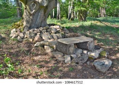 bench for rest under old oak, south Bohemia, Czech Republic