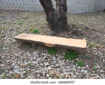 Bench in a secluded park