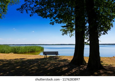 Bench at the Shore of a Peaceful Lake in Germany Brandenburg