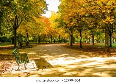 bench in tiergarten berlin at the beginning of autumn