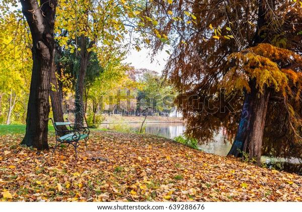 Bench toward the lake late autumn. Tree near the lake with heart graffiti.