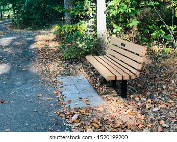 A bench in trail park with some brown leaves around