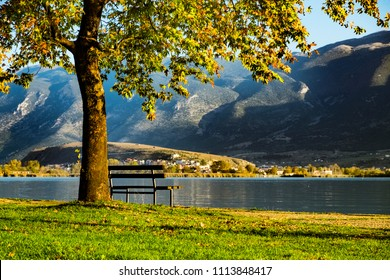 A bench under the tree next to the lake among the mountains in the sunrising light.