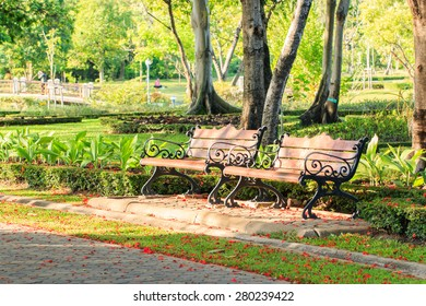 Bench under the tree in the park