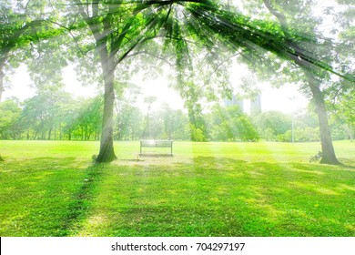 The bench is under the trees and have branches and shade ray of light from sun shine people can sit  under it  and look far.