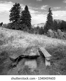 Bench and wooden table on a nice meadow. Mountain peaks and fir trees in bright sunlight in the background.