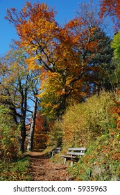 Benches along a hiking path - beautiful fall colors