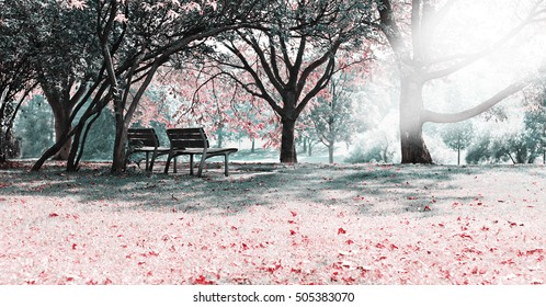 benches in the park at autumn photomanipulation