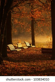 benches in the park scene