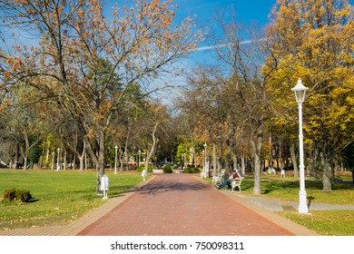 The benches in the park of the thermal spa resort Palic lake near Subotica, Serbia, offer rest and idyllic view of the aristocratic villas and autumn park