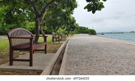 The benches under trees and walkway by the sea.
